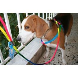 Σαμαράκι ρυθμιζόμενο για μικρομεσαία σκυλιά πολύχρωμο